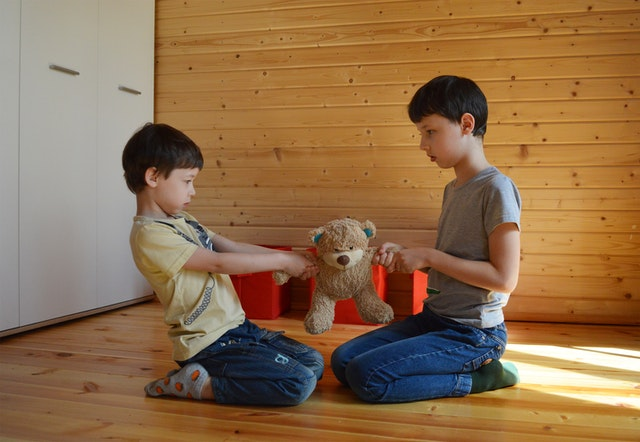 two kids fighting over teddy bear - conflict resolution for kids